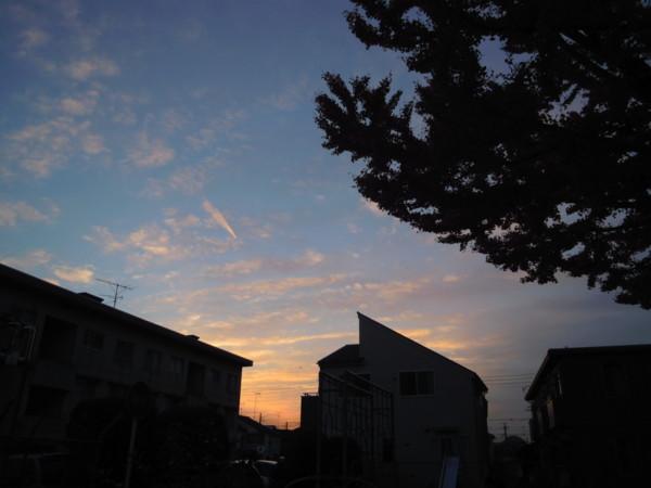 f:id:nanohana-chan:20110203184651j:image:w500
