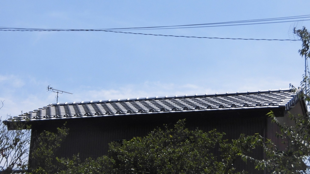 f:id:nanohana-sumai:20210826150927j:plain