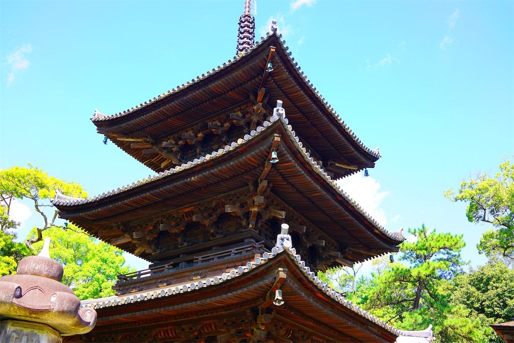 f:id:nanohana2000:20170918184802j:image