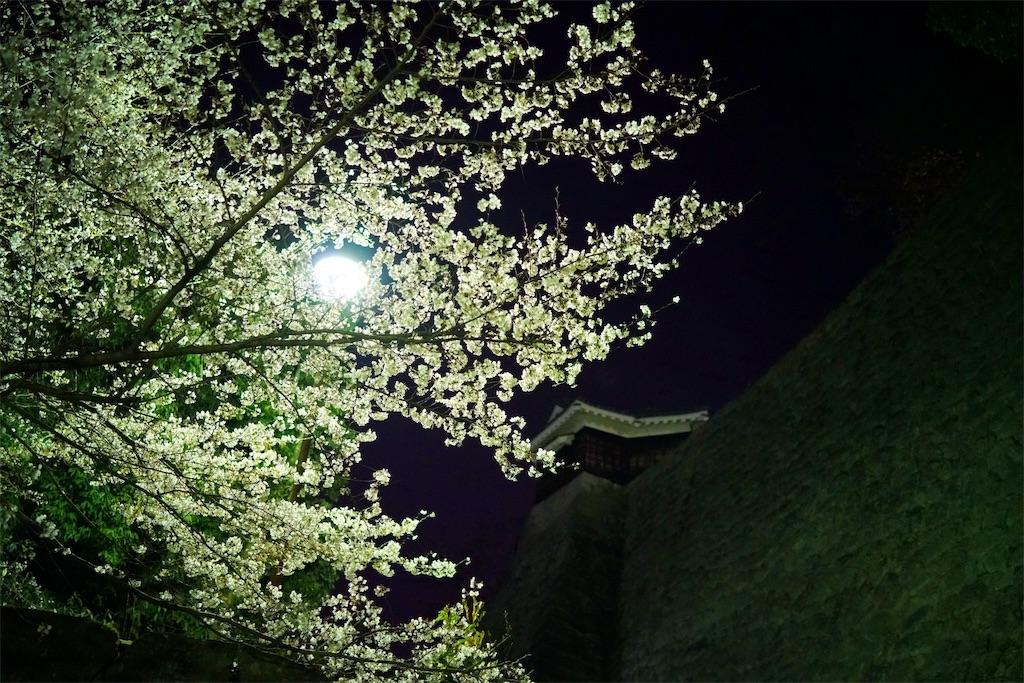 f:id:nanohana2000:20180325205023j:image