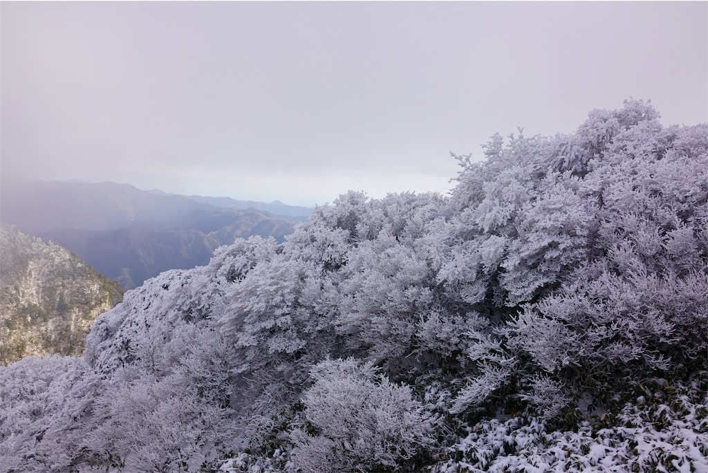 f:id:nanohana2000:20190107175937j:image