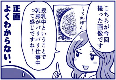 f:id:nanpoo803:20170907145939j:plain