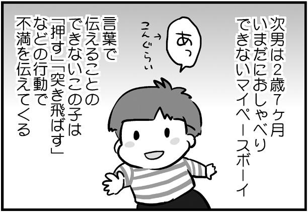 f:id:nanpoo803:20181227144722j:plain