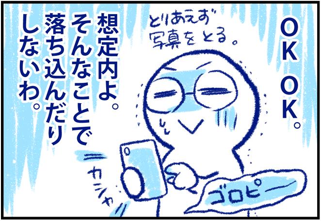 f:id:nanpoo803:20200218122047p:plain
