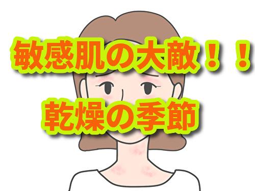 f:id:nantokanaru0606:20191116235347j:plain
