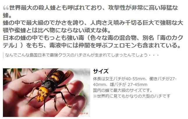 f:id:nanyoko-koutyou:20160906101306j:plain