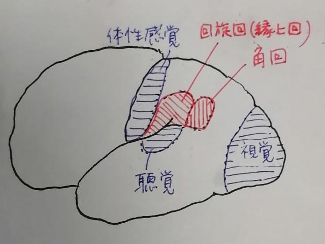 f:id:nao-chun:20190918193942j:plain