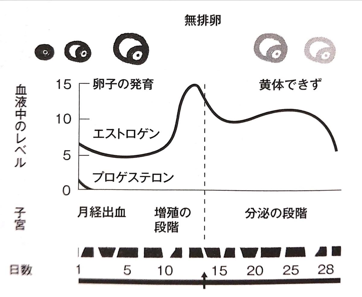 f:id:nao-chun:20200113101740j:plain