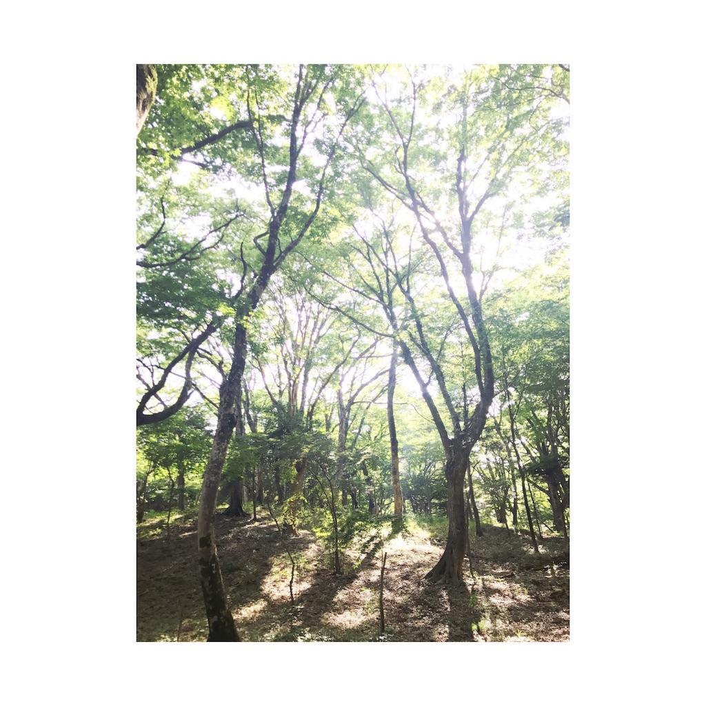 f:id:nao-tateko:20180219230458j:image