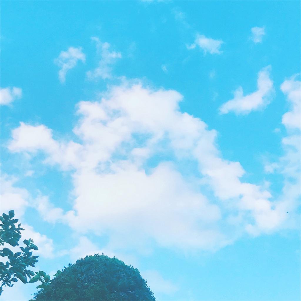 f:id:nao-tateko:20180806081302j:image