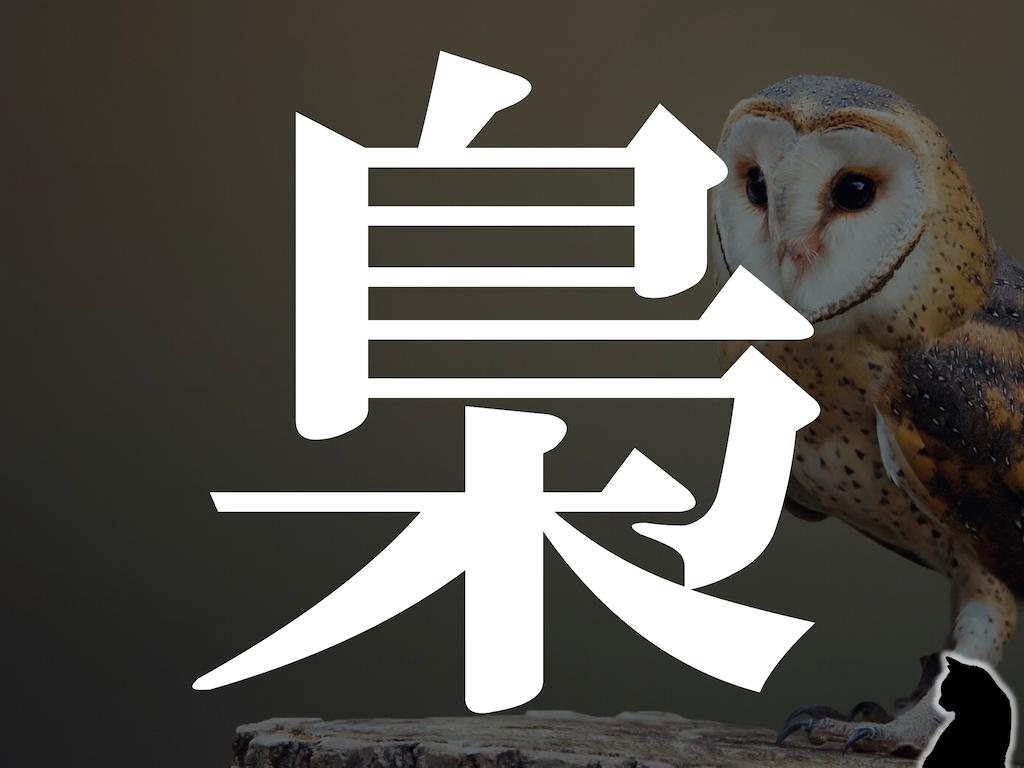 f:id:nao-yamamoto:20191207102509p:image