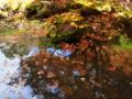 京都新聞写真コンテスト 常照光寺紅葉