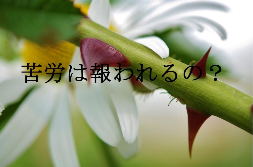 f:id:nao_2205:20160818161206j:plain