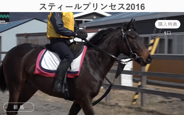 f:id:naoki-0925:20180702024021j:plain