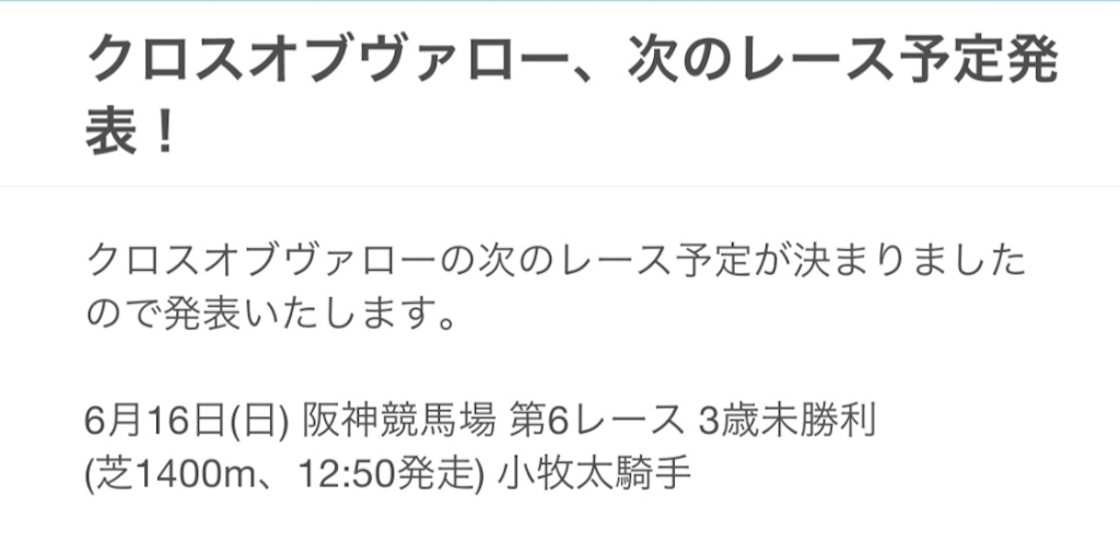 f:id:naoki-0925:20190602181821j:image