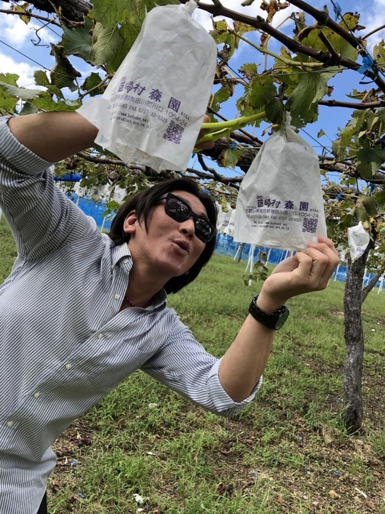 f:id:naoki-nishigaki:20181014215100j:plain