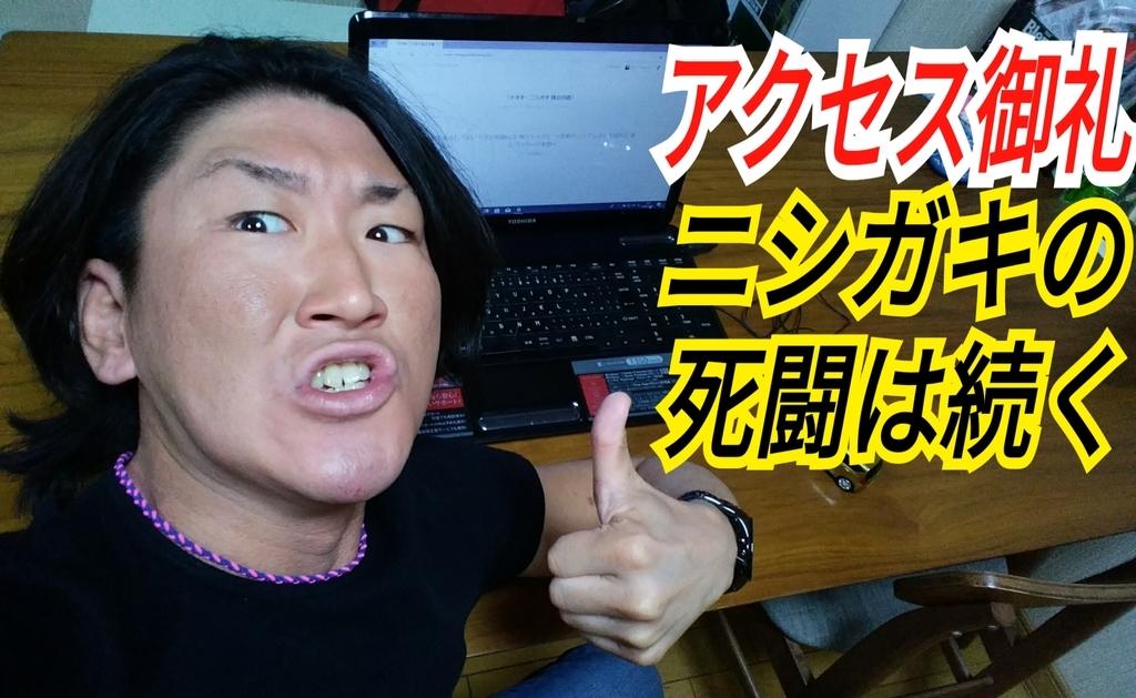 f:id:naoki-nishigaki:20181202203720j:plain