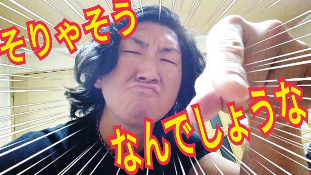 f:id:naoki-nishigaki:20181222235948j:plain