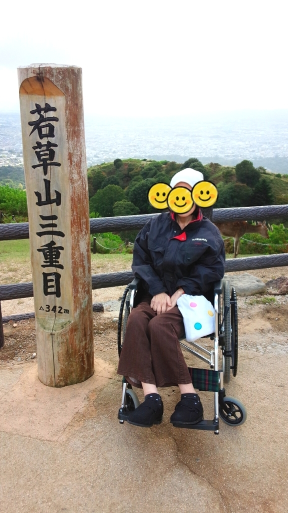 f:id:naoki-nishigaki:20190104175949j:plain