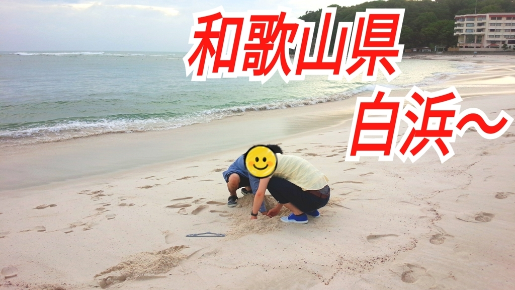 f:id:naoki-nishigaki:20190104184739j:plain