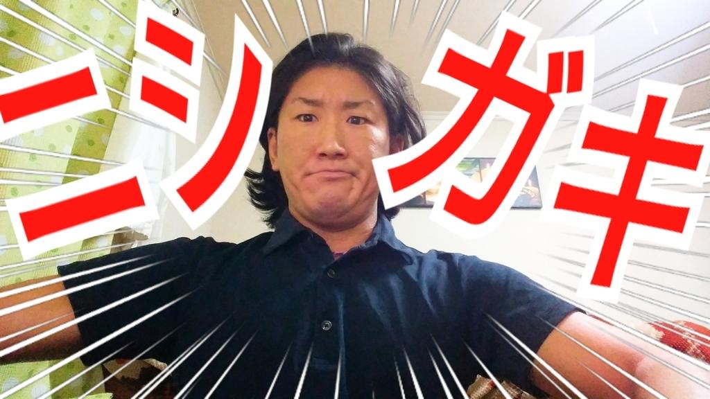 f:id:naoki-nishigaki:20190107230024j:plain