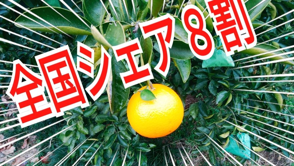 f:id:naoki-nishigaki:20190114012611j:plain