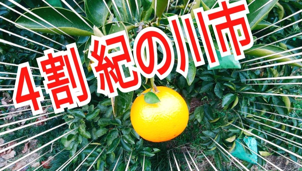 f:id:naoki-nishigaki:20190114012641j:plain