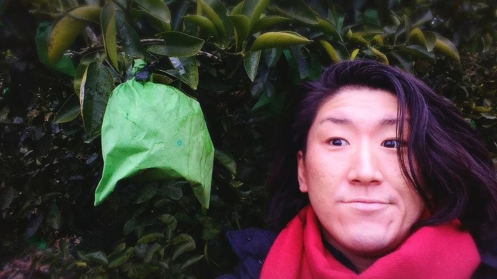 f:id:naoki-nishigaki:20190114013249j:plain