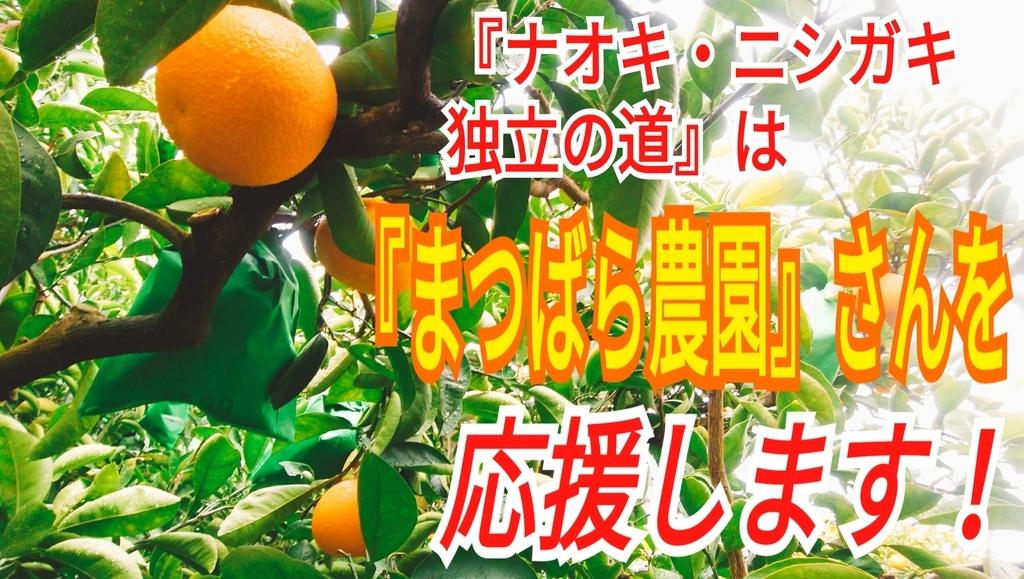 f:id:naoki-nishigaki:20190114060805j:plain