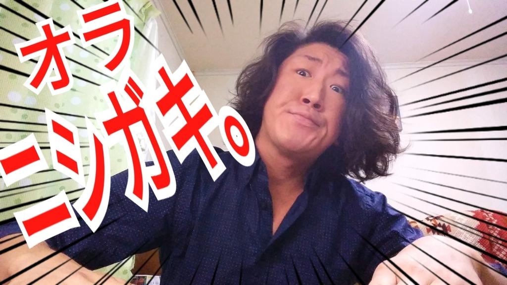 f:id:naoki-nishigaki:20190115210218j:plain