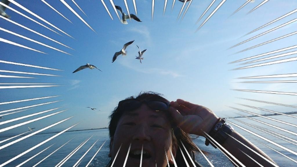 f:id:naoki-nishigaki:20190203231852j:plain