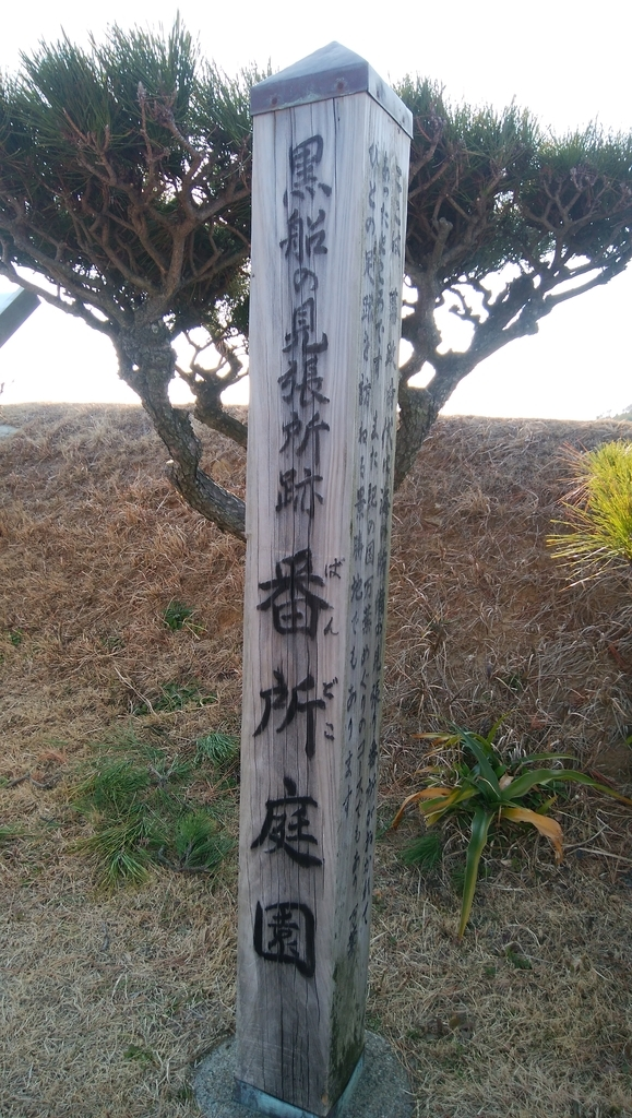 f:id:naoki-nishigaki:20190219035506j:plain