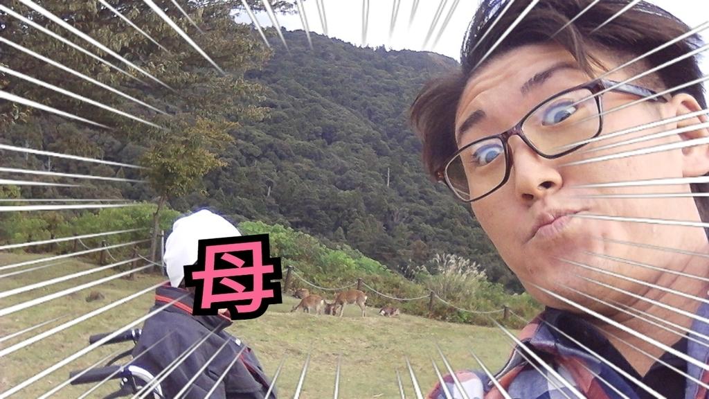 f:id:naoki-nishigaki:20190221045610j:plain