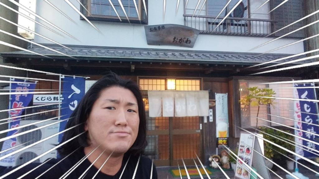 f:id:naoki-nishigaki:20190224193814j:plain