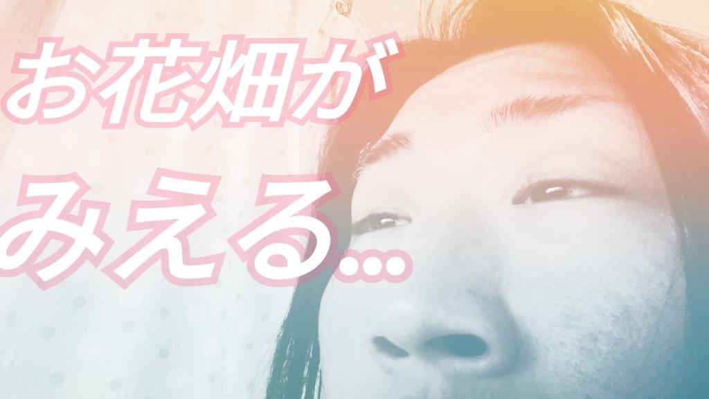 f:id:naoki-nishigaki:20190305234315j:plain