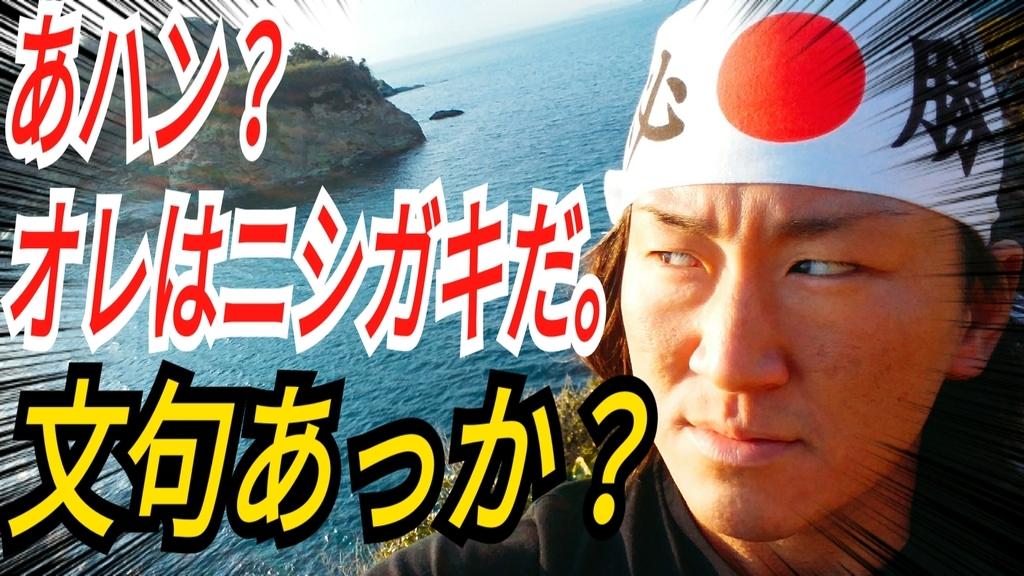 f:id:naoki-nishigaki:20190306015938j:plain