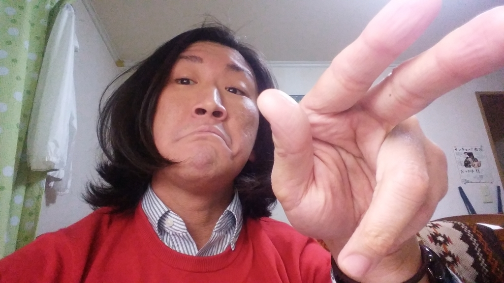 f:id:naoki-nishigaki:20190310012213j:plain