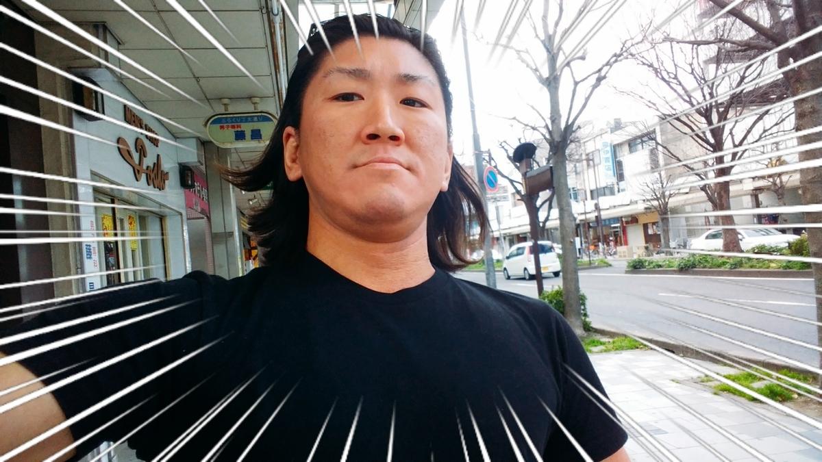 f:id:naoki-nishigaki:20190315230022j:plain