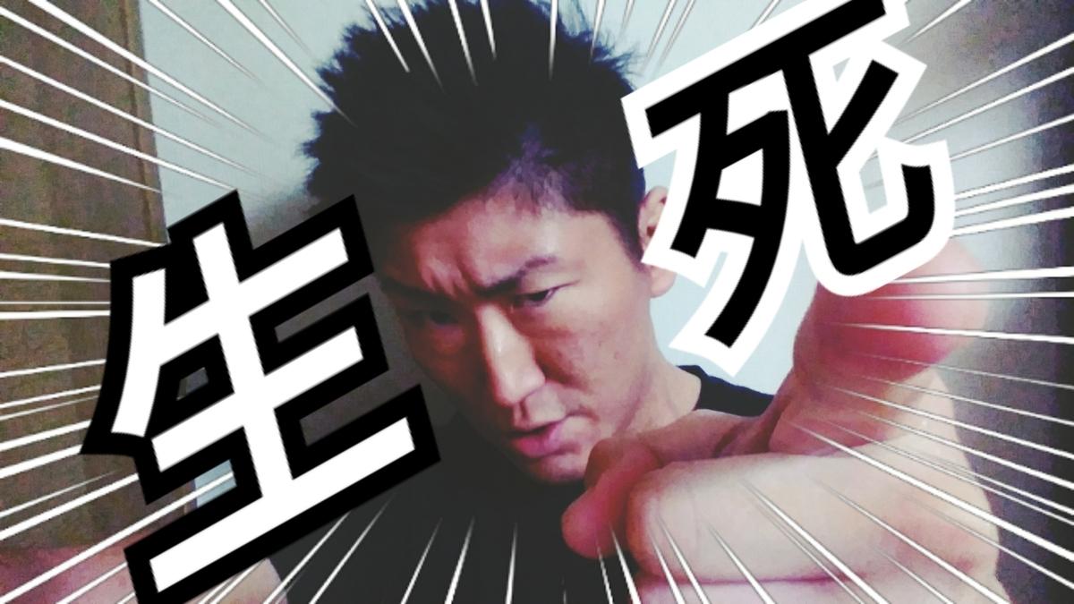 f:id:naoki-nishigaki:20190403064544j:plain