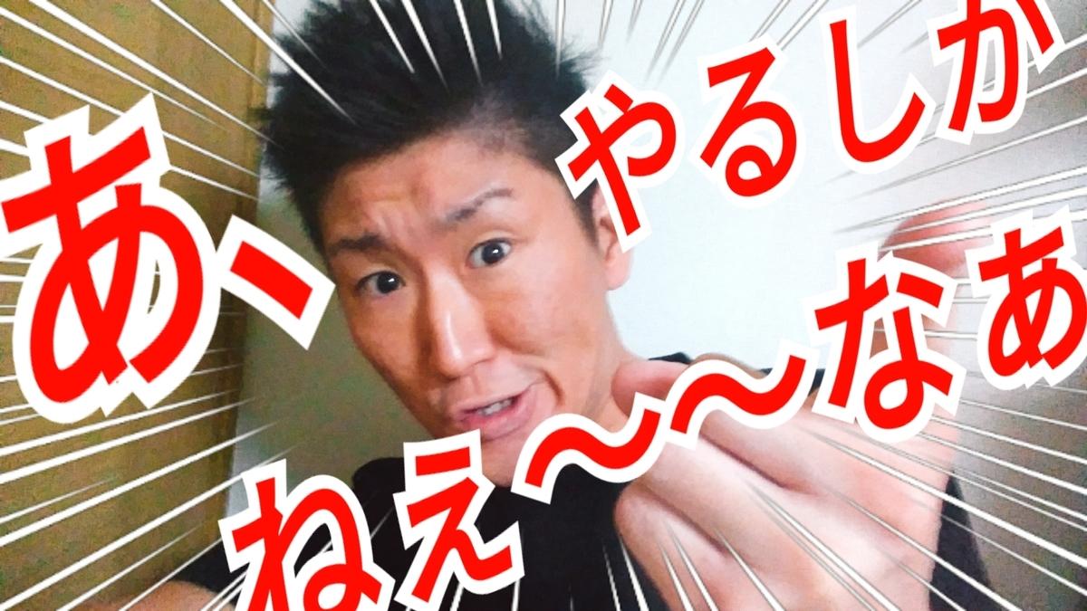 f:id:naoki-nishigaki:20190403065601j:plain