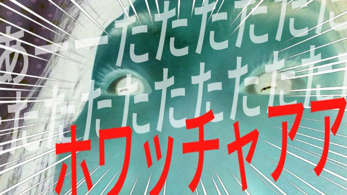 f:id:naoki-nishigaki:20190403072433j:plain
