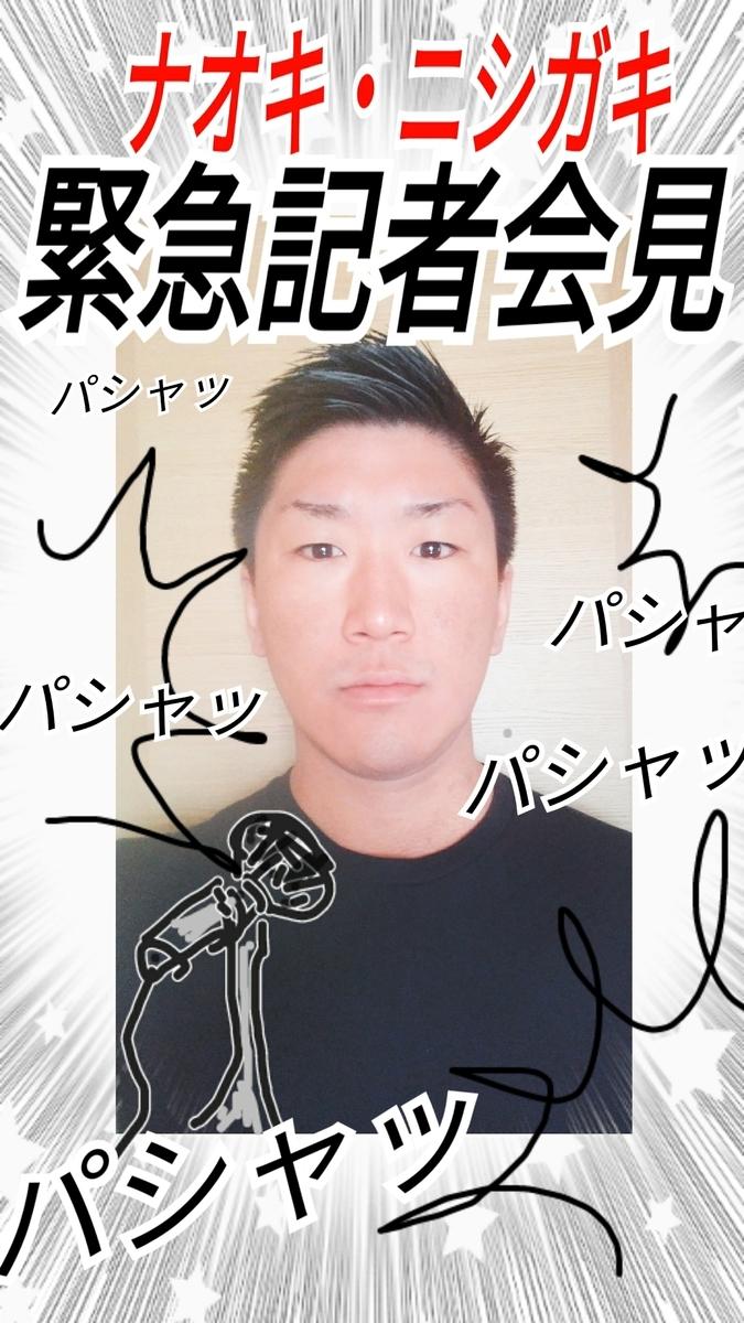 f:id:naoki-nishigaki:20190413163706j:plain