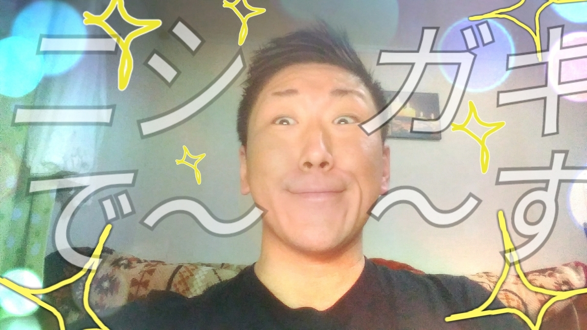 f:id:naoki-nishigaki:20190420083952j:plain