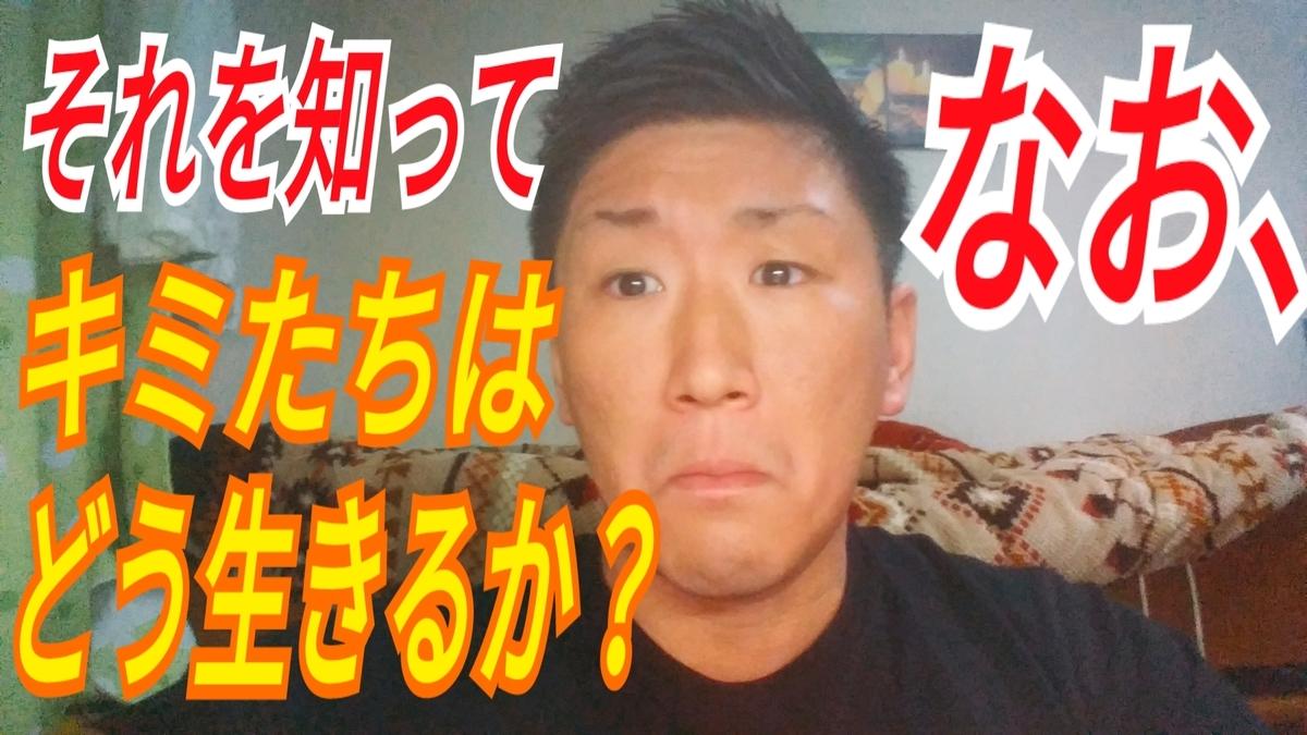 f:id:naoki-nishigaki:20190426151626j:plain