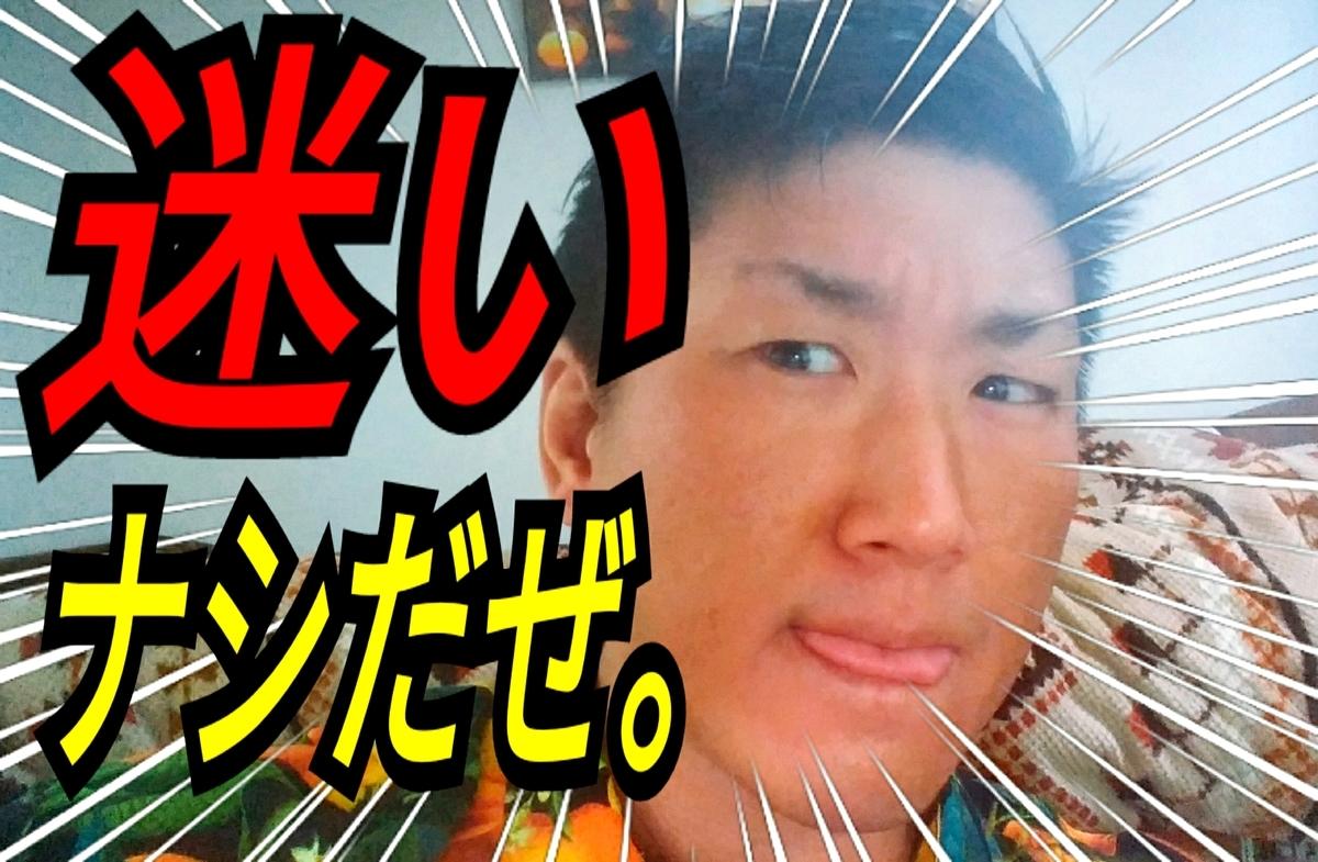 f:id:naoki-nishigaki:20190507070616j:plain