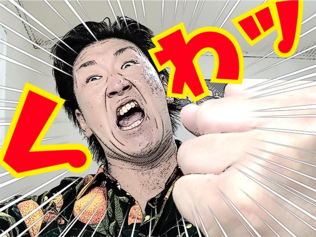 f:id:naoki-nishigaki:20190707212419j:image