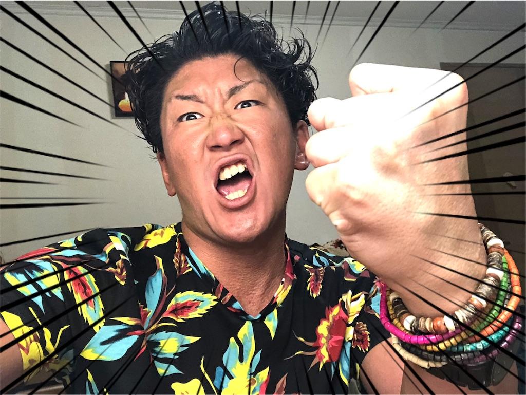 f:id:naoki-nishigaki:20190815233012j:image