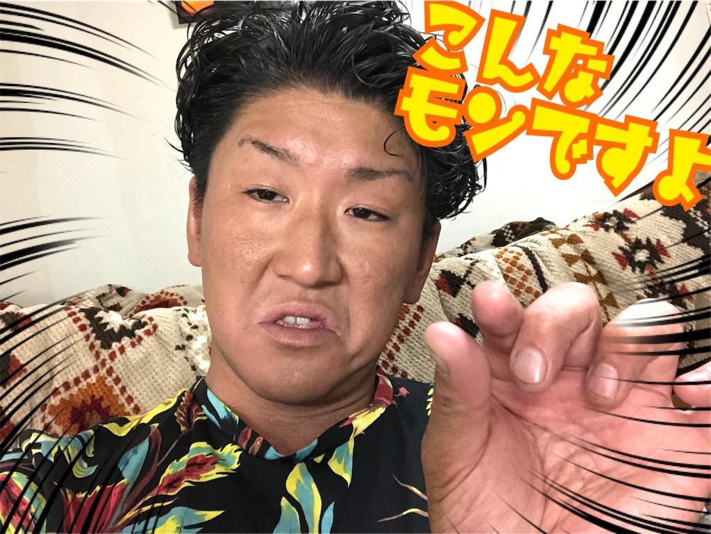 f:id:naoki-nishigaki:20190902032254j:image