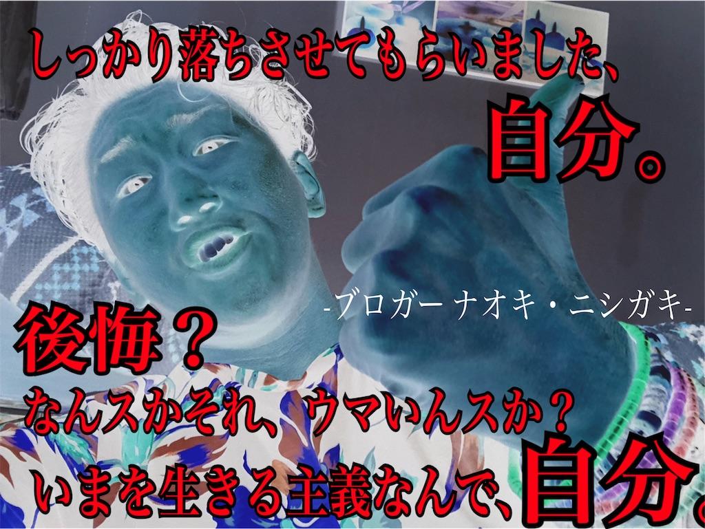 f:id:naoki-nishigaki:20191119130753j:image