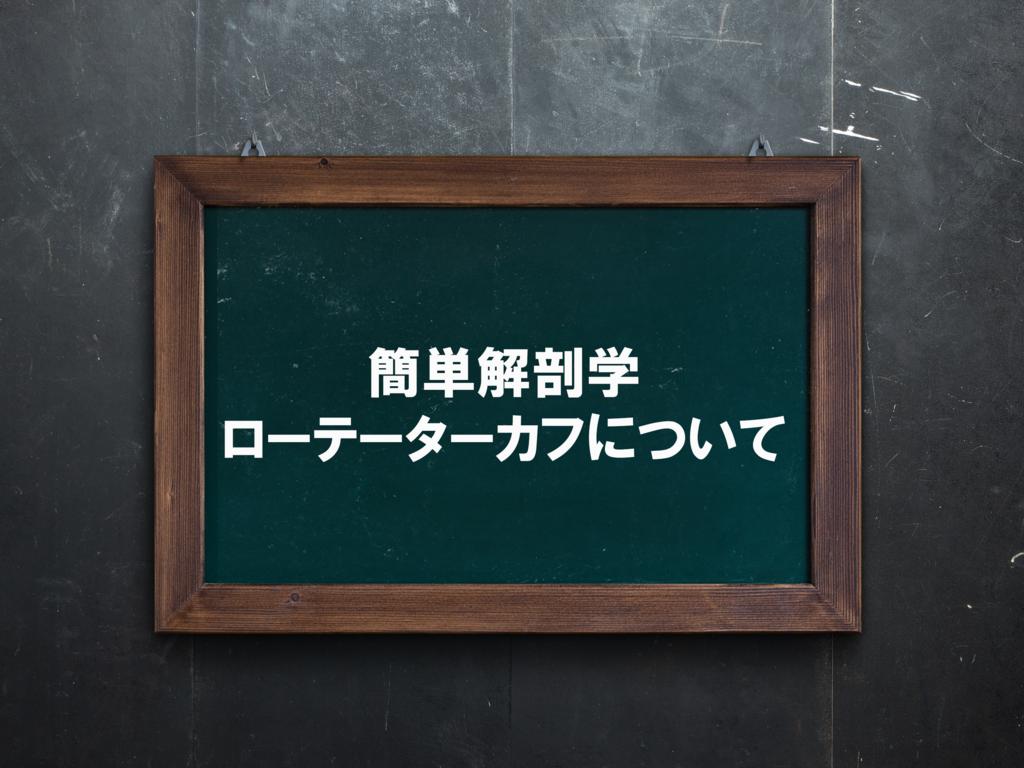 f:id:naoki-osugi:20171208104740p:plain